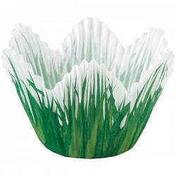 Caissettes à Muffins Tulipe Décor Herbe